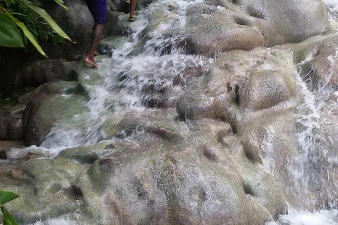 Zipline, Bobsled - Dunn's River - Bob Marley From Ocho Rios