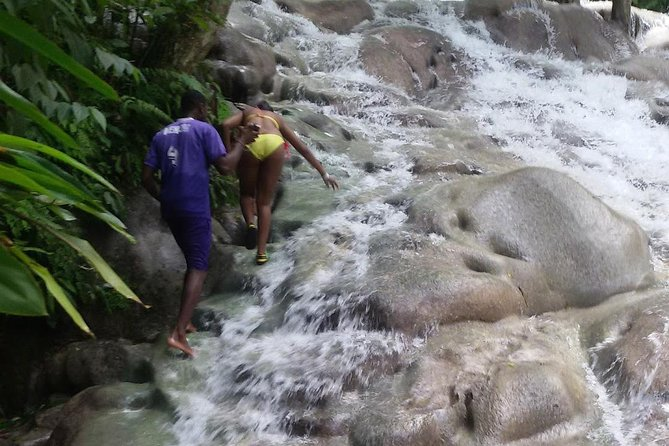 Zilpine Mystic - Dunn's River From Ocho Rios photo 3