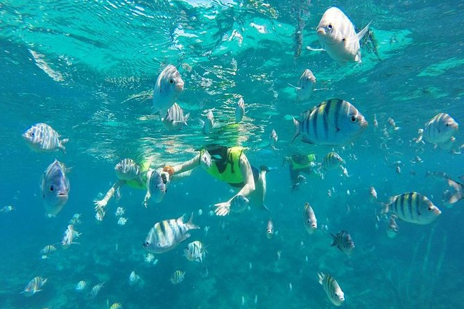 Discover Sosua's Underwater World & Beach Day