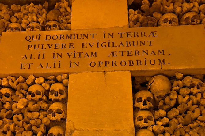 Paris Catacombs Skip The Line Walking Guided Tour