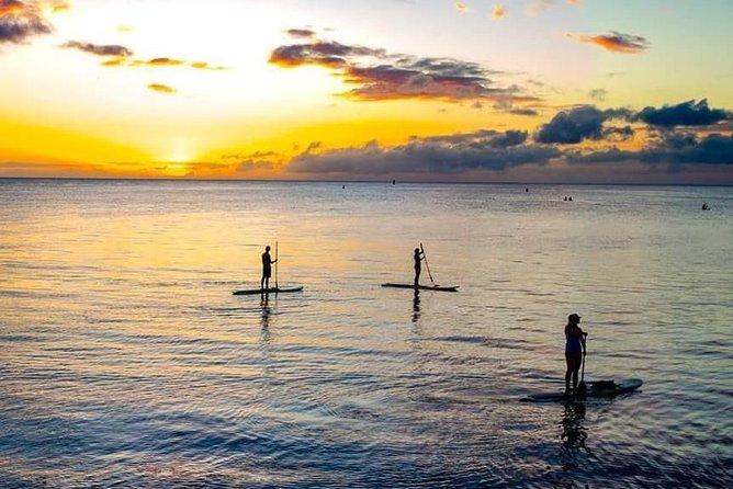 Twilight GLOW Paddle: Paddleboard Above a Halo of Light
