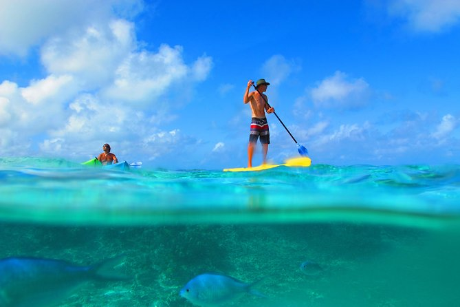 Kayak or SUP with Snorkeling photo 6