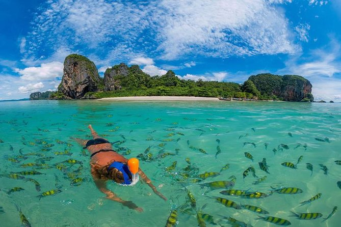 Phi Phi Islands Half Day Tour From Phi Phi by Big Boat