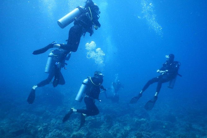 Scuba Diving Discovery Course on Hon Mun Island in Nha Trang photo 4