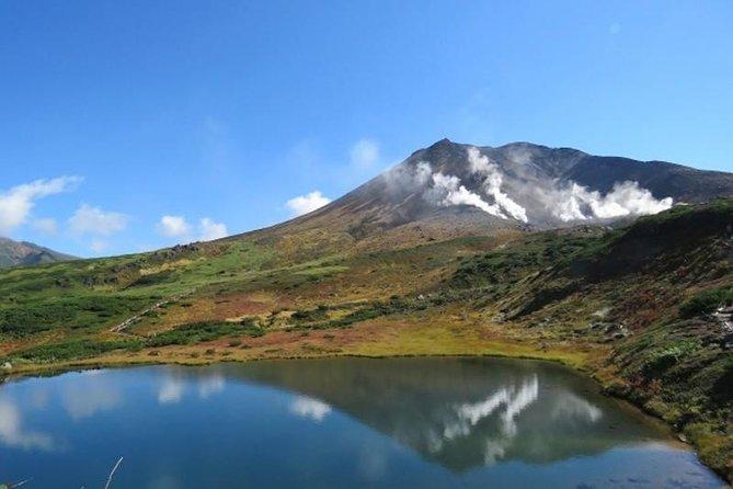 Hokkaido's Mt. Asahidake Sky Walk and Shikisai-ga-Oka Hill Tour!