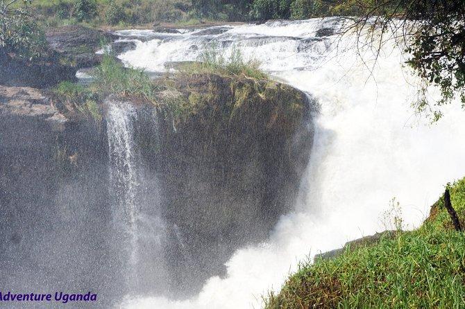 3 Days Murchison Falls Nation Park and Zziwa Rhinos