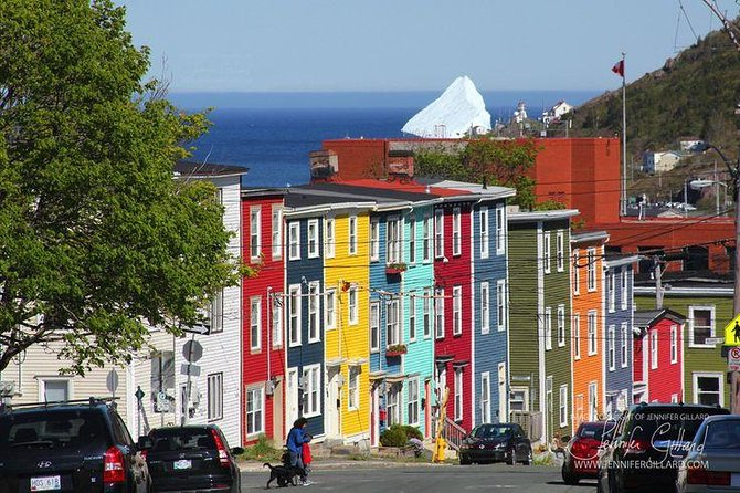 90 Minute Walking Tour of Historic Downtown St. John's