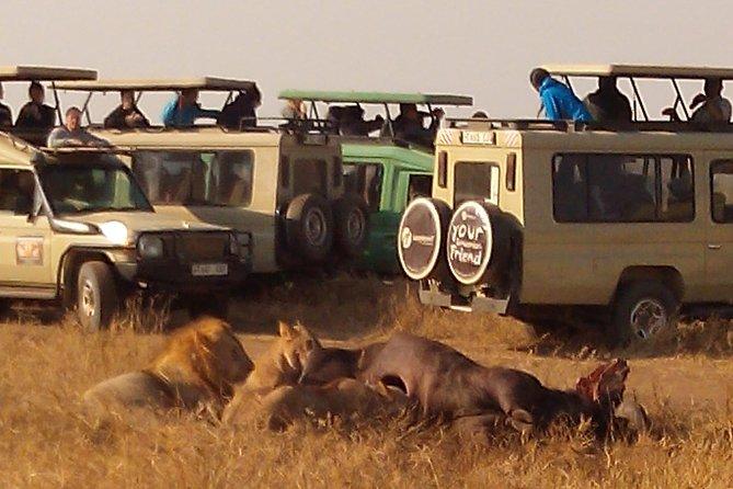 Serengeti National Park 4 Days Safari Camping