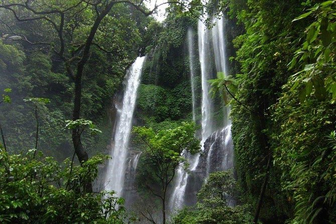 "Private Day Tour"" North Bali with sekumpul waterfall and Temples"""