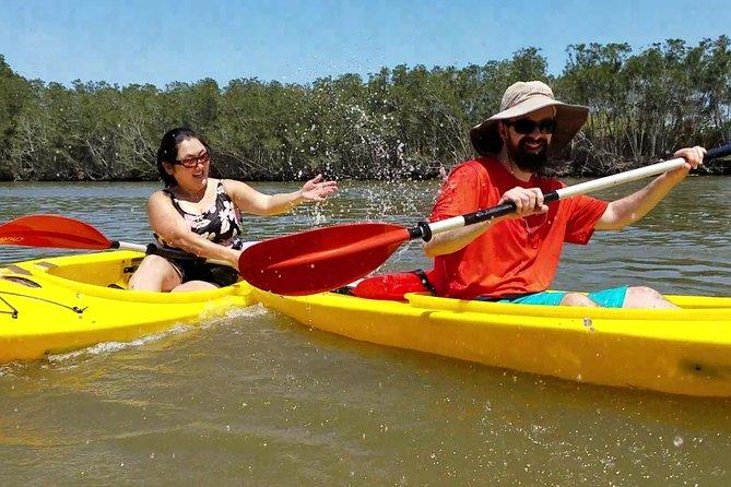 Dolphin & Manatee Kayaking Tour in Orlando Area