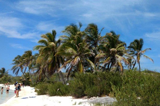 Viagem de um dia á Isla Contoy: mergulho com snorkel no recife Ixlache e excursão paradisíaca ecológica