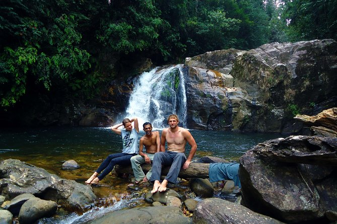 Private Tour : Sinharaja Rainforest - Waterfall Visit or Bird Watching Tour photo 2