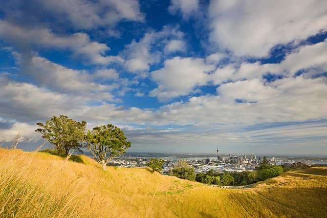 Private Auckland Volcanoes Luxury Tour