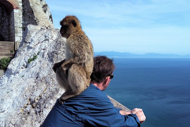 Gibraltar tour from the Border