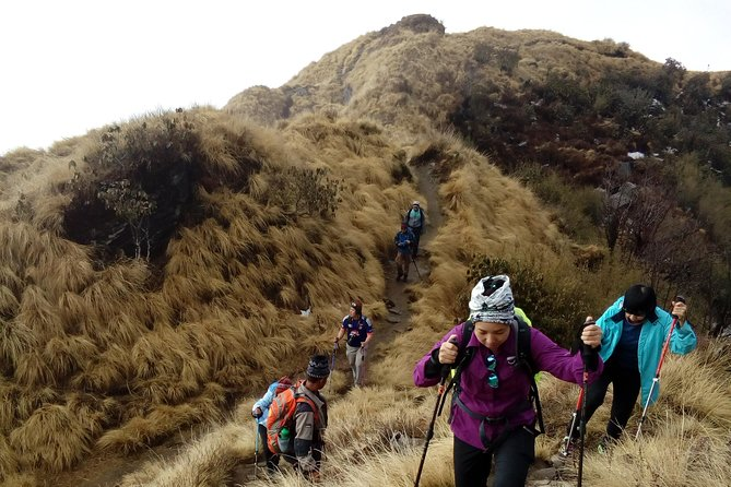 4 Days Mardi Himal Base Camp Trek from Pokhara
