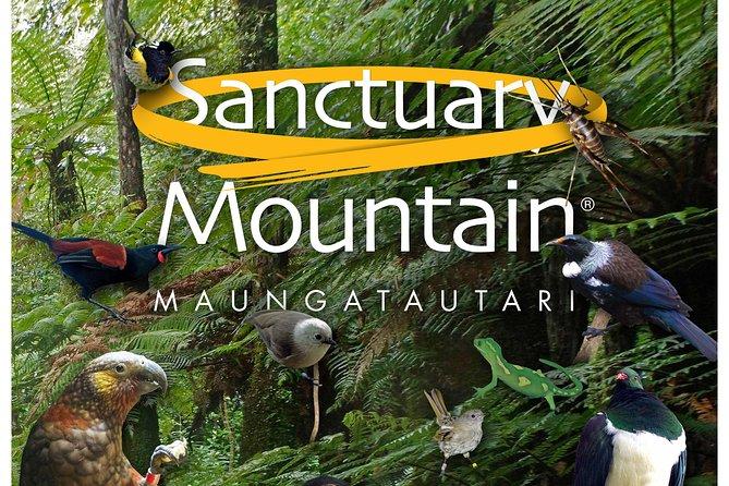 Auckland to Sanctuary Mountain and Hobbiton Movie Set Private Tour