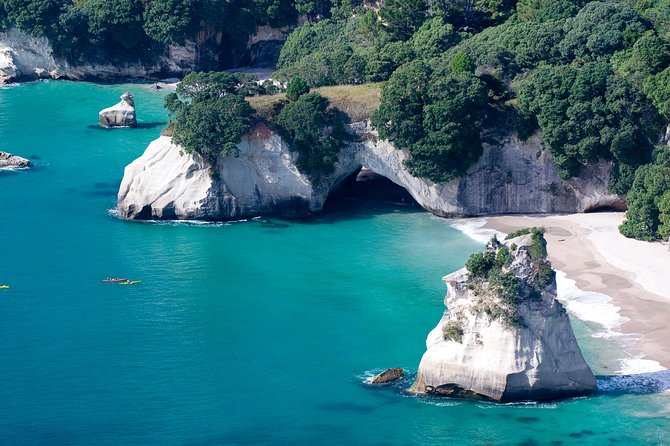 Auckland to Coromandel Private Tour