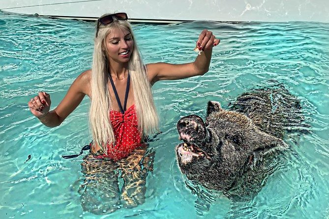 Full-Day Small-Group Tour to Pig Beach by Powerboat