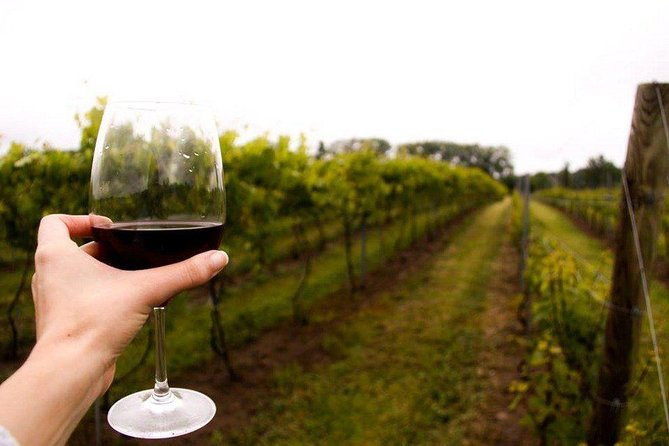 Niagara USA All-Inclusive Wine Tour