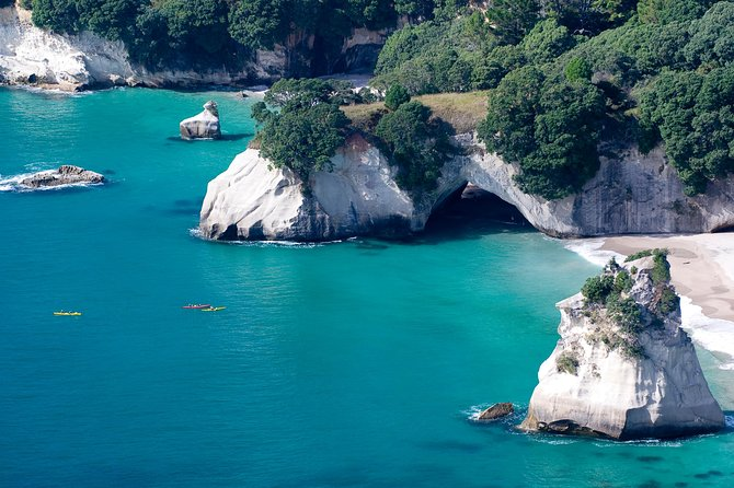Auckland to Coromandel, Taupo & Rotorua Private 7 Day Tour