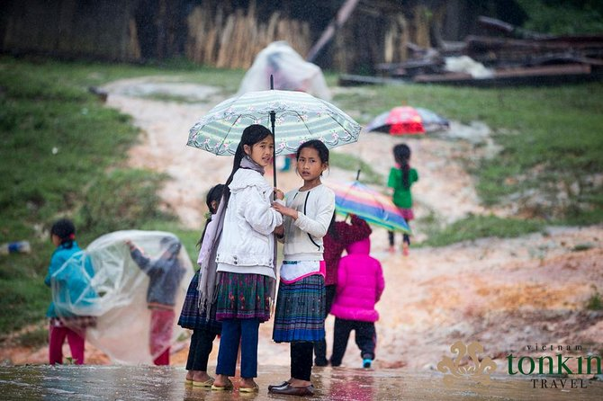Sapa trekking villages homestay & hotels package tours from Hanoi in 3 days photo 8