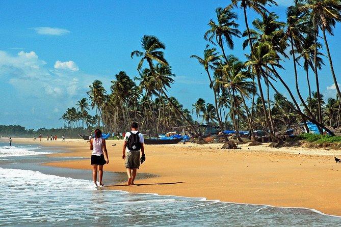 Colony, Backwaters & Beaches of Kerala (7 Days)
