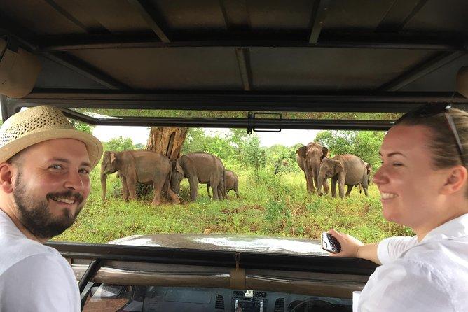 Udawalawe safari with Elephant transit home