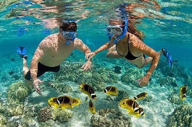Bali Best Snorkeling at Blue Lagoon with Transport and Lunch