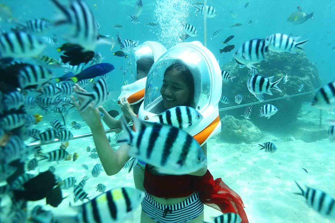 Bali Seawalker and Ubud Full Day Tour