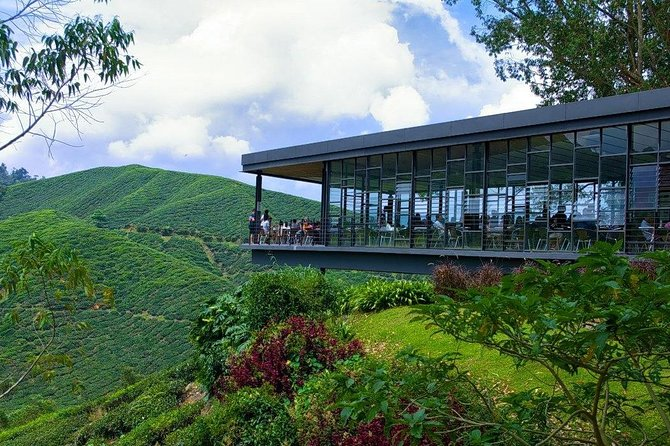 Cameron Highlands Tour From Kuala Lumpur - Private