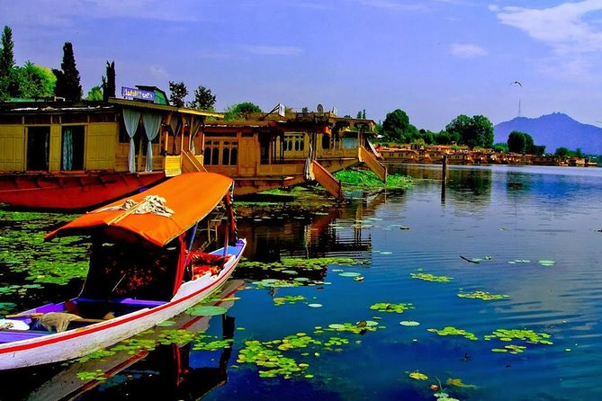 Private 4 Days Kashmir Tour Package photo 3