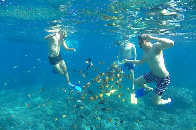 Nusa Penida Island COMBO Tour (Manta Point Snorkeling and Island Tour) photo 10