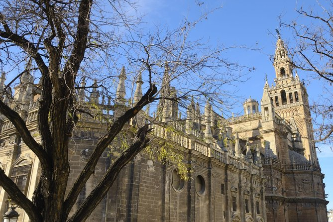 Early Access to Seville Cathedral photo 6