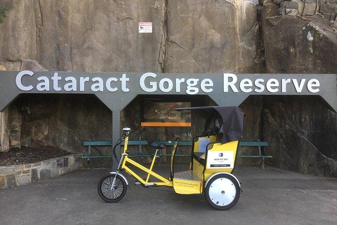Launceston Cataract Gorge - Twilight, wildlife, local history walking tour.