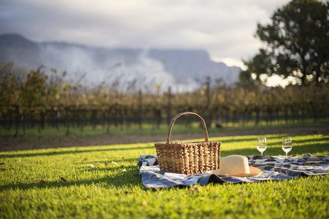 Full-day Winelands Explore Private Tour of Stellenbosch, Franschhoek and Paarl