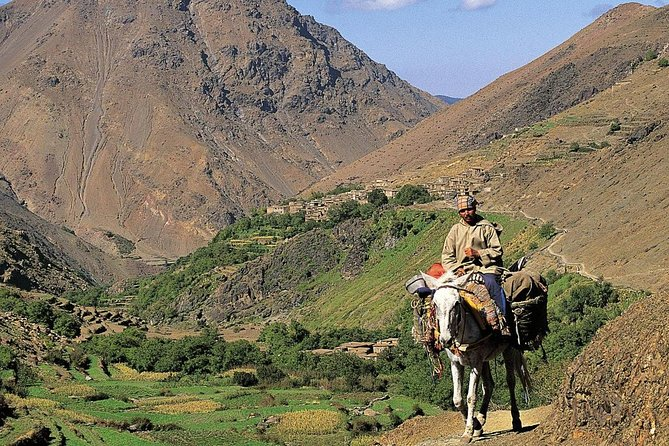 Three Valleys and High Atlas adventure Full Day Trip From Marrakech photo 4