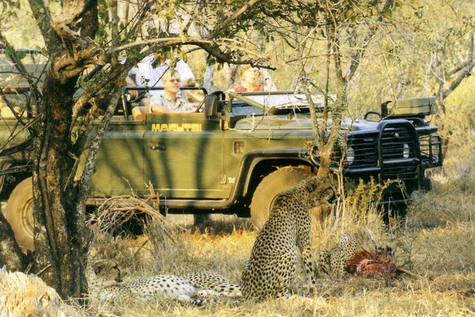 Cape Town Private, Aquila Safari Full Day Tour