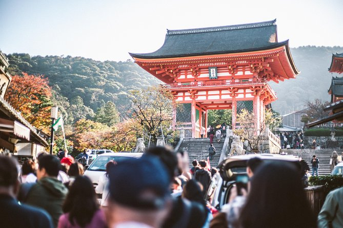 Kyoto Cultural Forest, Shrine and Temple Tour with Options