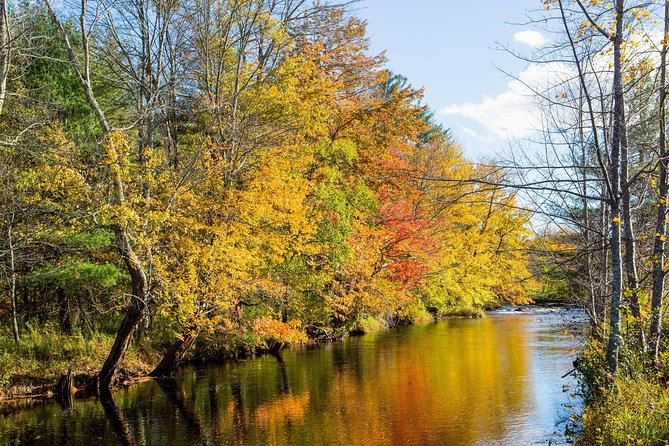 Autumn in New England: Fall Foliage Sightseeing Day-Trip with Lunch from Boston