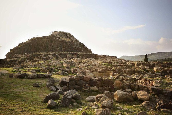The wilde horses of the Giara and the nuraghe of Barumini photo 6
