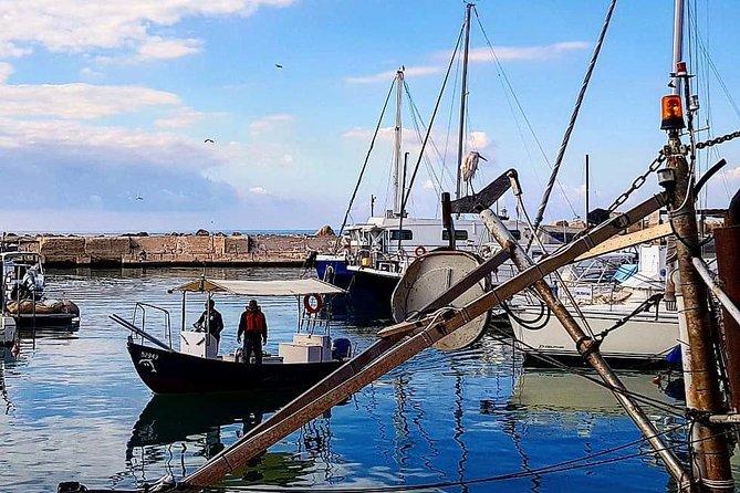 Jaffa's Port