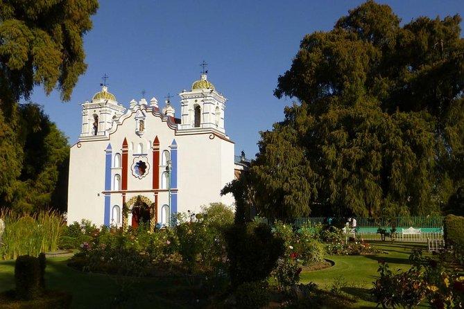 Tule, Teotitlán del Valle, Mitla, Hierve el Agua and Palenque de Mezcal Tour