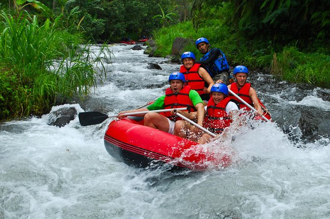 Bali White Water Rafting and Bali Swing Adveture