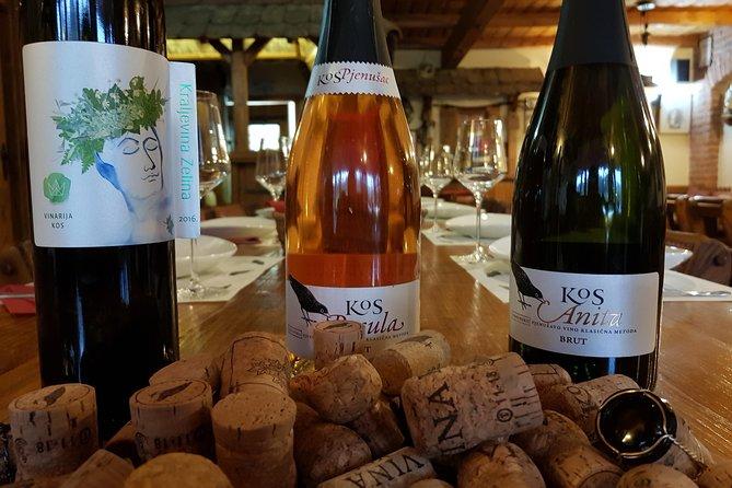Wine tour and tasting in Sveti Ivan Zelina
