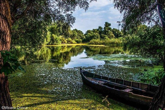 14 days full Donau Delta, Brașov and Apuseni tour