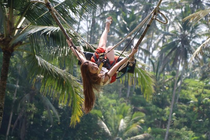 Private Tours The Best Highlight of Ubud photo 1
