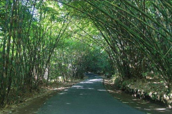Bali Nature Countryside Tours