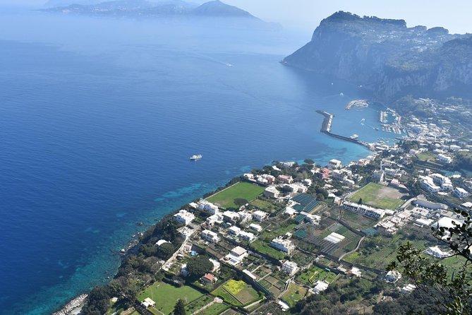 Private Capri and Blue Grotto Tour from Positano