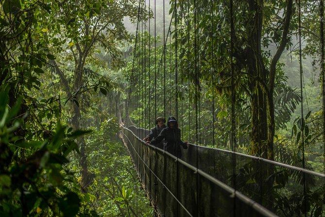Arenal Expedition Combo Tour - Hanging Bridges (3 en 1)