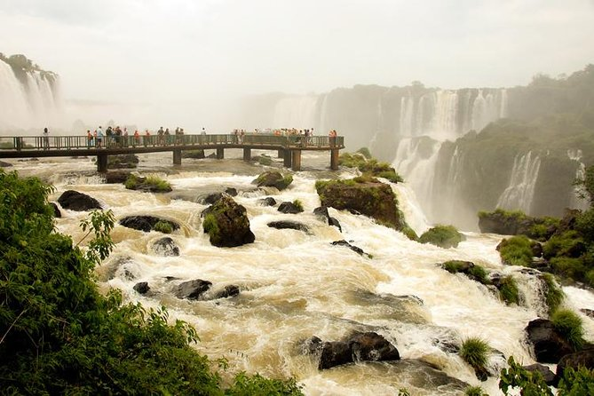 Private Brazilian Iguazú Falls Tour and Birdwatching at Parque Das Aves